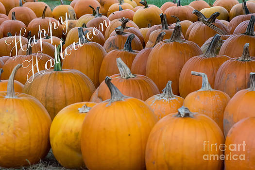 John Greco - Happy Halloween Pumpkin Patch