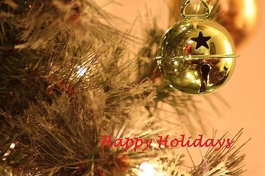 Happy Holiday by David S Reynolds