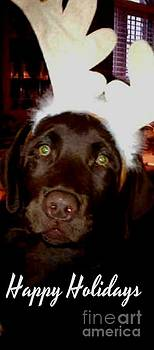 Gail Matthews - Happy Holidays Chocolate Labrador