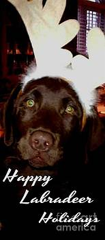 Gail Matthews - Happy Labradeer Holidays