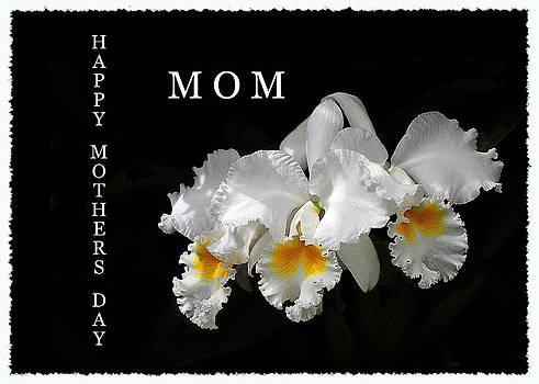 Randall Branham - Happy Mother