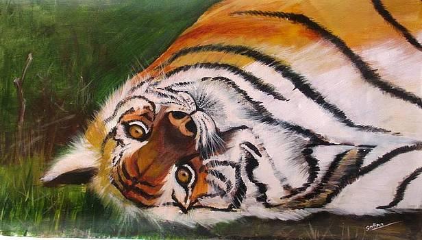 Happy Tiger by Sadhna Tiwari