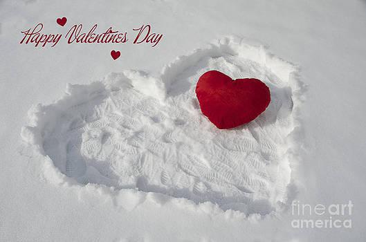 Happy Valentins Days by Nicole Markmann Nelson