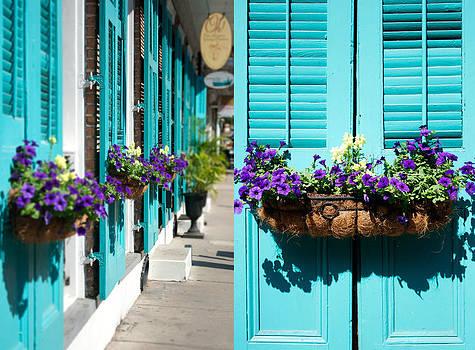Happy Windows by Elisabete Companion