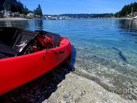 Harbor Kayaking by Tanya  Searcy