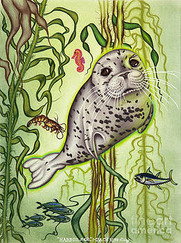 Harbor Seal by Taryn  Libby