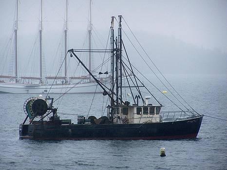 Gene Cyr - Harbor Ships