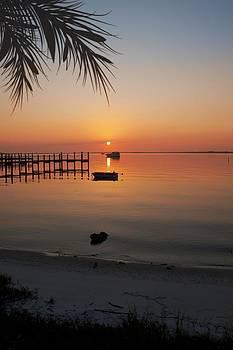 Regina  Williams  - Harbor Sunrise