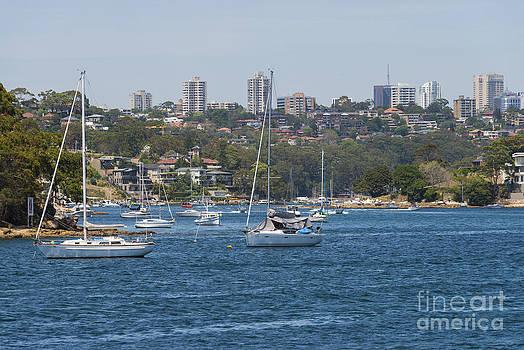 Bob Phillips - Harbour View Seven