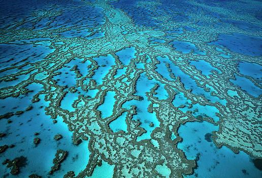 Jean-Paul Ferrero - Hardy Reef on the Great Barrier Reef Marine