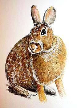 Hare by Jeanne Grant