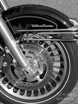 Harley Black and White by Annette Allman