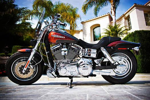 Harley Davidson - Fat Bob by Micah Dimitriadis