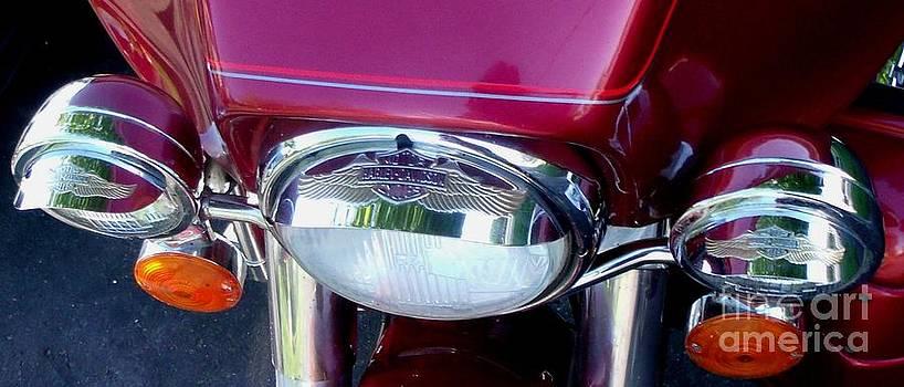 Gail Matthews - Harley Davidson Headlights