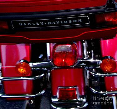 Gail Matthews - Harley DavidsonTail Lights
