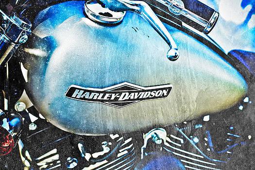 Harley Grunge  by Tamara Hamula