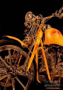 Harley by Tony Ruggiero