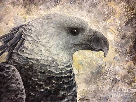 Harpy Eagle Study in Acrylic by K Simmons Luna