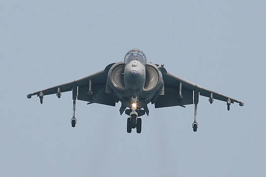 Donna Corless - Harrier Gear Down Straight on