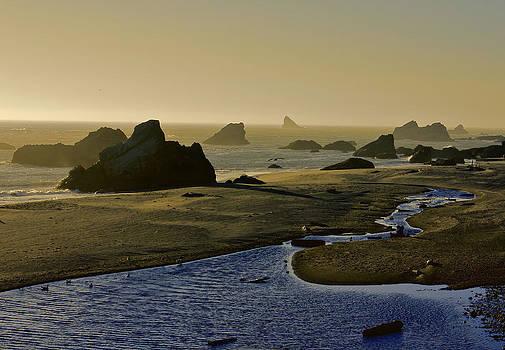 Harris Beach by Jeanne Hoadley