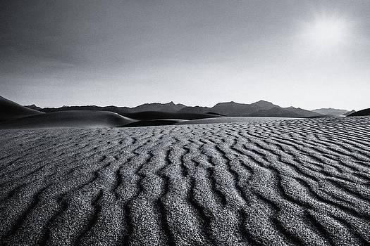 Gene Garnace - Desert Lines