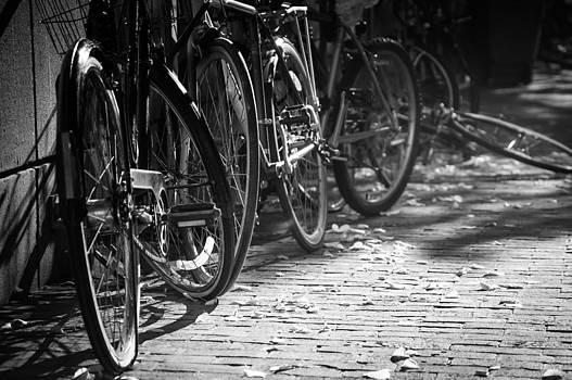 Harvard Bikes by David Pinsent