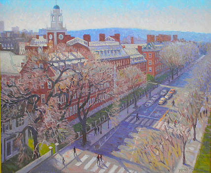 Harvard Square by Dianne Panarelli Miller