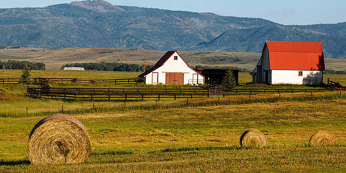 John McArthur - Harvest in the Rockies