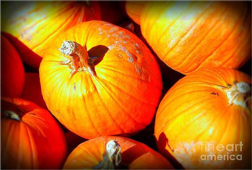 Harvest by Lorraine Heath