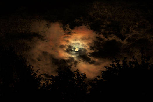 Harvest moon by Donald Torgerson