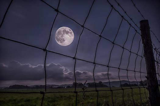 Harvest Moon by Jaki Miller