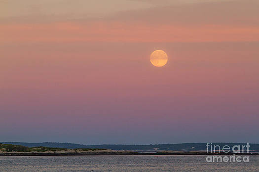 Harvest Moon on Ocean by Denise Lilly