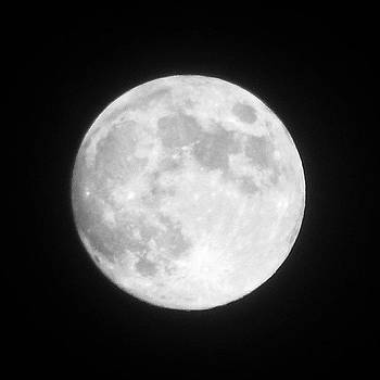 Harvest Moon. Taken With My Galaxy Note by Malcolm Van Atta III