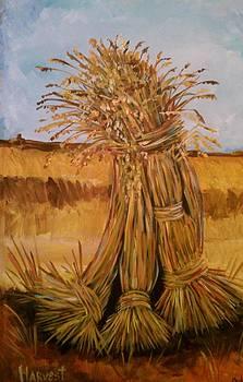 Harvest by Paula Stacy Adams
