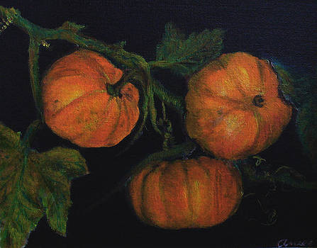 Harvest Pumpkins by Anees Peterman