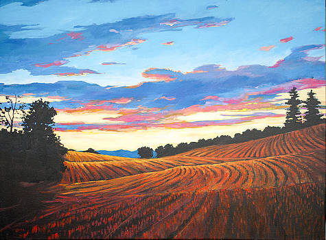Harvest Sunset in Clermont by Patty Baker