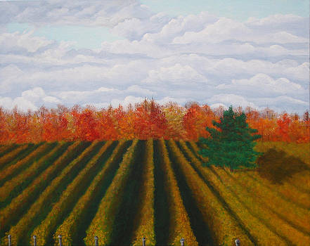 Harvest Vines make Harvest Wines by Brandy Gerber