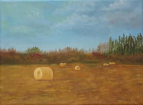 Harvests End 1 by Brenda Maas