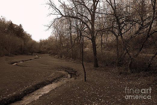 Hassadahl Creek by M Hess