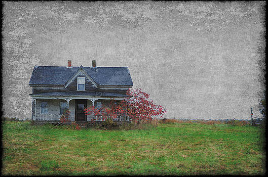 Haunted House by Lisa Purcell