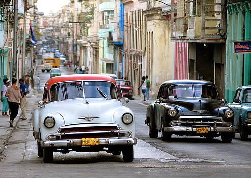 Havana by Louise Morgan