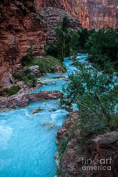 Jim McCain - Havasu Creek