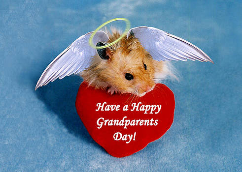 Jeanette K - Have a Happy Grandparents Day Hamster