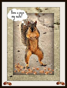 Have u seen my nuts by Janet Moss