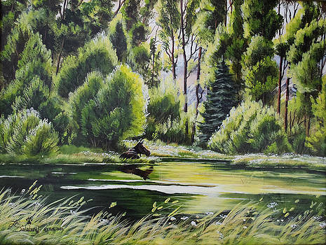 Haven in the Cottonwoods by Lori Salisbury