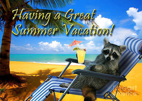 Jeanette K - Having a Great Summer Vacation Raccoon