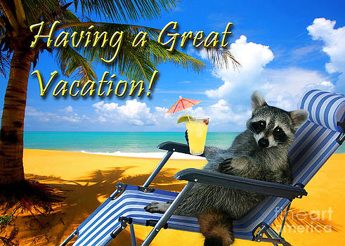 Jeanette K - Having a Great Vacation Raccoon