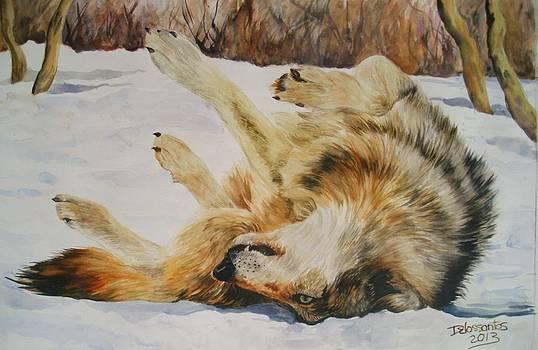 Having Fun In The Snow by Kristina Delossantos