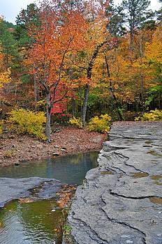 Marty Koch - Haw Creek Fall 2