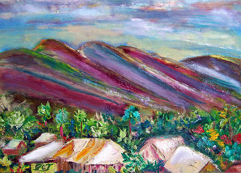 Patricia Taylor - Hawaii Mountains and Village